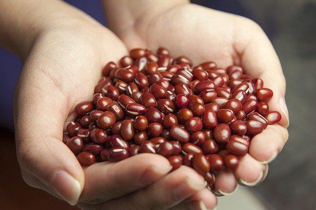 小豆の「赤」は厄除けの色